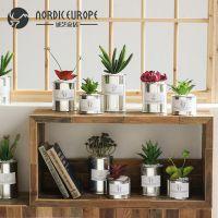 JSHCY北欧金属仿真多肉植物盆栽家居装饰品摆件创意客厅办公室摆