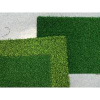 香港景观草坪 休闲场合草 七年质保 全国发货 工厂直供