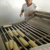 水果玉米漂烫加工一体机 糯苞米蒸煮设备