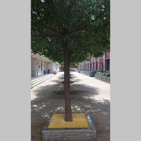 城市绿化玻璃钢树篦子哪里有卖的 河北华强