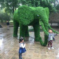 国宝熊猫用假草丝做 美丽孔雀假花朵制造的 成都绿雕造型厂家