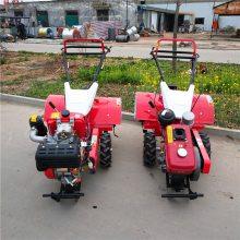 图片苗圃旋耕机 优质轻便型手推式柴油旋耕机