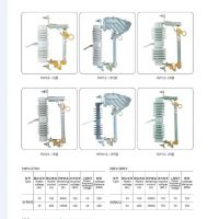 高压熔断器RW12-12/100-12.5