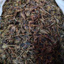 【中药材全蝎】药用功效与作用 全虫蝎子产地市场直销批发价 格多少钱一公斤