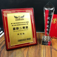 厂家批发活动比赛水晶纹绣奖杯   定做高档奖牌学校公司免费设计
