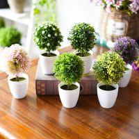 北欧仿真多肉小盆栽摆件设 室内假绿植盆景 仙人掌类植物