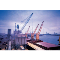 国际海运拼箱服务 家庭搬家拼箱 零散货物海运运输