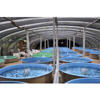 工厂化养殖加热恒温系统 鱼虾养殖加热设备 鱼虾池保温设备 养殖专用热泵