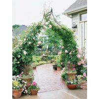 玫瑰花拱门,拱门景观,绿植门头,拱门制作,仿真绿植门头,婚庆拱门高档仿真花拱门铁艺拱门