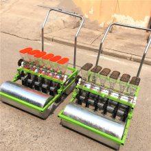 10行蔬菜播种机汽油机自走式 香菜精量播种机 娃娃菜播种机价格