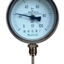 WSS 双金属温度计