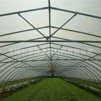 政府补贴种植 猕猴桃 火龙果 浙江水果种植大棚建造