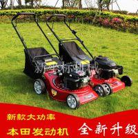 草坪机械 手推自走式剪草机 大马力汽油机割草机 除草修剪机