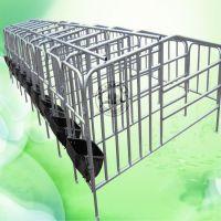 河北宏基供应母猪定位栏 十个猪位母猪保胎床