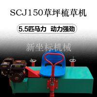 振鹏机械设备人造草坪梳草机柴油型重量轻结构紧凑