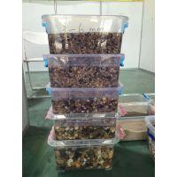 许昌天然鹅卵石价格/变压器鹅卵石/水处理鹅卵石价格