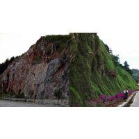 矿山修复与治理 边坡植被恢复 植被恢复工程河南景绣放心之选