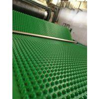 洛阳塑料排水板-滤水板厂家批发- 现货供应 大量库存 随时发货 -鹏业建材欢迎您