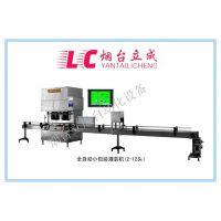 YLJ-II-LC化工助剂小包装灌装机、中小包装一体机、立成包装设备、防冻液车用尿素液定量装桶