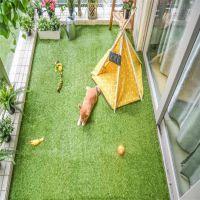 客厅阳台铺地草坪 假草坪护理 塑料仿真草