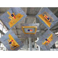 QINGHAO|BFC8116|BFC8118|LED防爆泛光灯|150W|100瓦|20防爆灯华荣