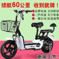 炎阳电动车48v新款电动自行车双人电瓶车成人踏板车