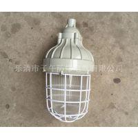 CCD93-J68xH 防爆紧凑型节能灯厂家