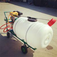 雅马哈汽油高射程大容量打药机 高压轻便手推式喷雾器