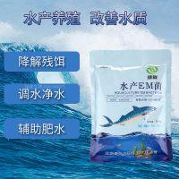 水产养殖专用EM菌 调水质肥水净水鱼虾蟹益生菌拌料泼洒高浓缩菌粉