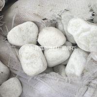 厂家供应白鹅卵石 园林别墅造景白石头3-5cm