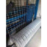 牛栏网A安平网围栏A牛栏网厂家专卖SL-NLW001