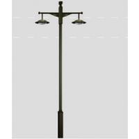 铜陵公园双臂路灯杆销售