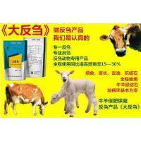 鑫维康农牧集团 大反刍提高牛羊采食量 调理肠道促进消化吸收 抗拉稀 预防尿结石 1袋1公斤拌料500