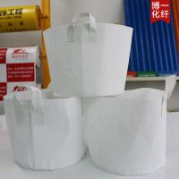 黑色塑料杯、美植袋、轻基质无纺布育苗容器、育苗托盘作用概述: