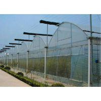 建多少亩地的温室大棚可以申请农业补贴/薄膜温室蔬菜