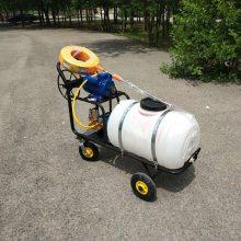 高压自走式汽油喷雾器 果园打药机