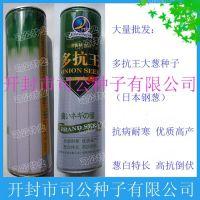 批发蔬菜种子、种苗 多抗王大葱种子(钢葱)罐装 200g/罐