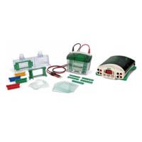 伯乐BIO-RAD PowerPac基础电泳仪1645050+小型垂直电泳槽 1658025