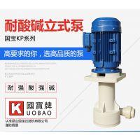 国宝立式离心排污泵 浙江耐酸碱立式泵 坚持品质