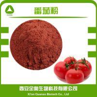 优质脱水番茄粉 西红柿粉 喷雾干燥番茄粉 超微细 纯度100%