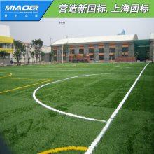 建造仿真地毯十年经验厂家尾货建一个足球场多少钱