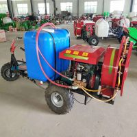 三轮柴油喷药机 座驾式三轮打药机 大面积自走式大容量喷雾器