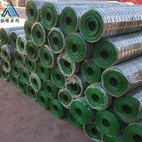 绿色铁丝网现货供应 养殖围栏