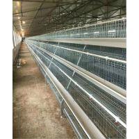 专业出口镀锌农家鸡笼 全自动阶梯式简易蛋鸡笼 通风好肉鸡笼