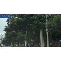 上海沪正纳米厂家直销防粘贴涂料