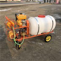 建筑工地降温降尘喷雾机 润众 水稻田农药喷雾器