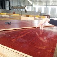 木模板 厂家直销 周转次数高 表面光滑平整易脱模