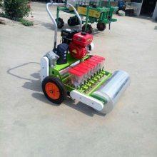 精细化蔬菜播种机械 包菜播种机 菠菜种植机