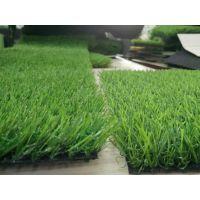 25mm人造草坪 强韧耐磨损