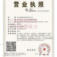 武汉徕德测绘仪器有限公司